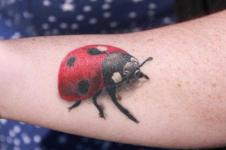 Tattoos - Color Ladybug Tattoo - 60514