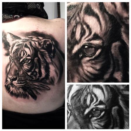 Tattoos - Portrait of a tiger - 119142