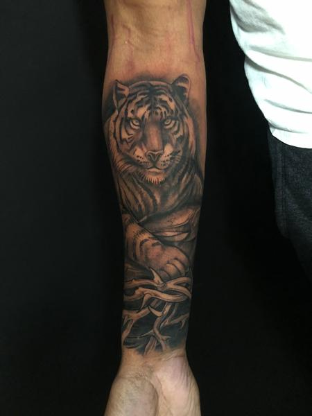 Killian Moon - black and grey tiger
