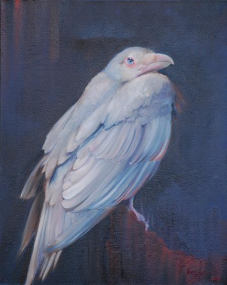 Miss Amanda - Albino Raven