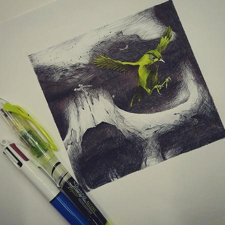 Vanessa Rodriguez - Skull and Bird drawing