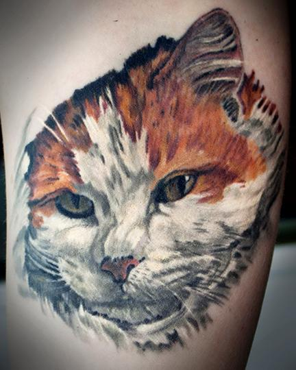 Tattoos - cat portrait - 108211