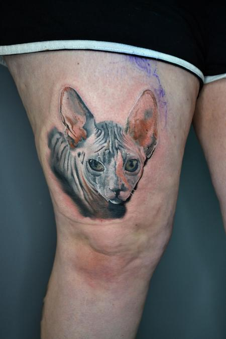 Tattoos - Sphynx Cat Portrait  - 141049