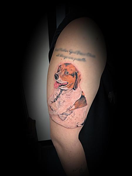 Tattoos - Beagle hound color portrait  - 140124
