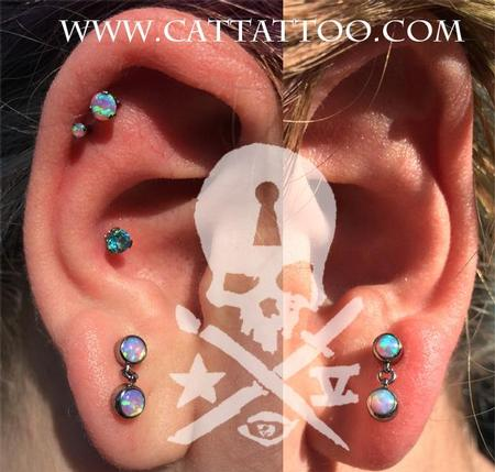 Brittany - Double cartilage, Conch, Lobes/IS