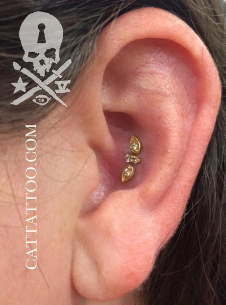 Brittany - Triple Conch/BVLA
