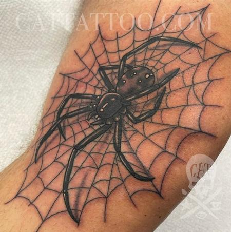 Justin Gorbey - Spider and Web