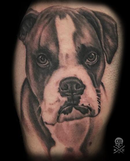 Zack Ross - Dog