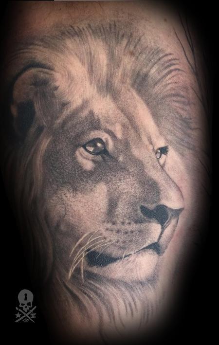 Robert Hornback - Lion