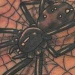 Prints-For-Sale - Spider and Web - 143016