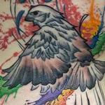 Tattoos - Sparrow - 126164