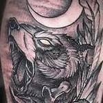 Tattoos - Bear - 133162