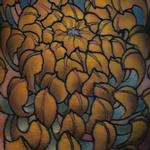 Prints-For-Sale - Chrysanthemum - 134490