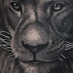Tattoos - Lion  - 134295