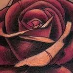 Tattoos - Rose - 138023