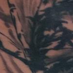 Tattoos - Sumi Style Bamboo - 128425