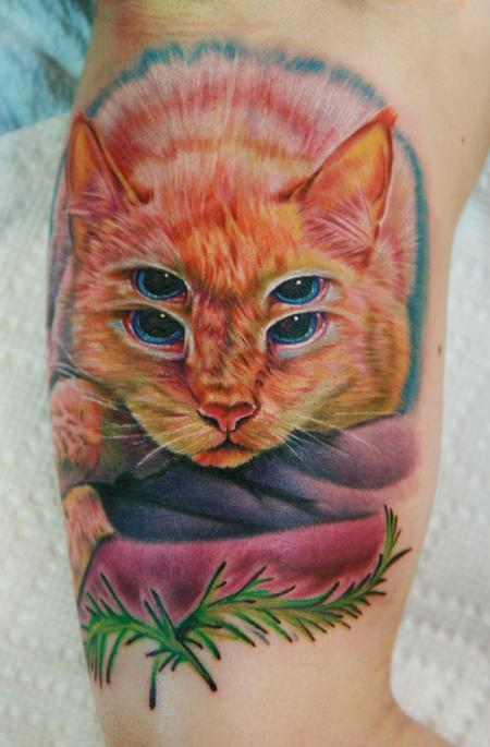 Tattoos - $ eyed cat