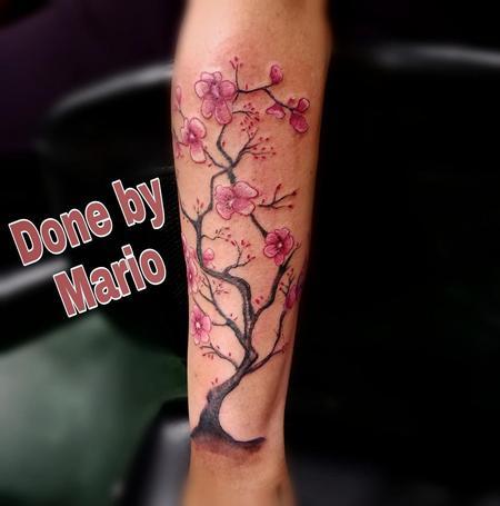 Tattoos - Cherry Blossom - 138519