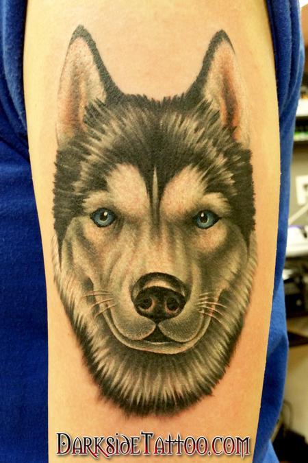 Tattoos - Color Husky Portrait - 103814