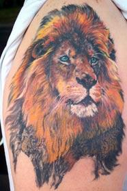 LITOS - Lion