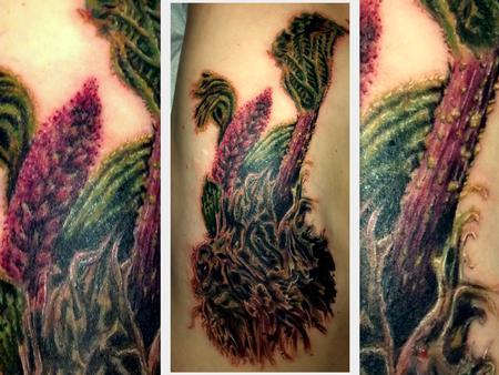 Tattoos - Rhubarb tattoo on ribs - 77118