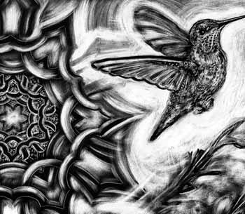 Michele Wortman - Hummingbird