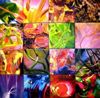 Michele Wortman - Organic Art Collection
