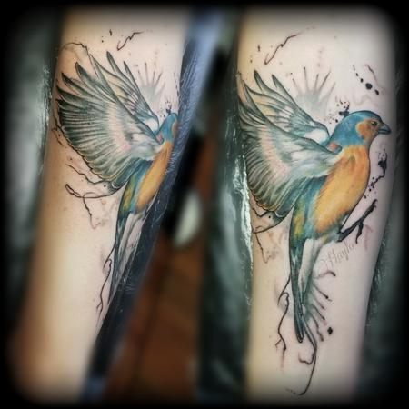 Tattoos - Blue and Gold finch with ink drips by Haylo  - 141213