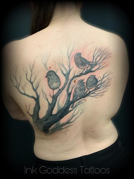 Tattoos - Finch birds in tree by Haylo - 141353