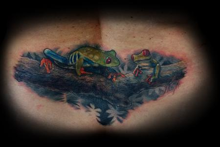Haylo - Cover up of old tribal tattoo with Tree Frogs on limb