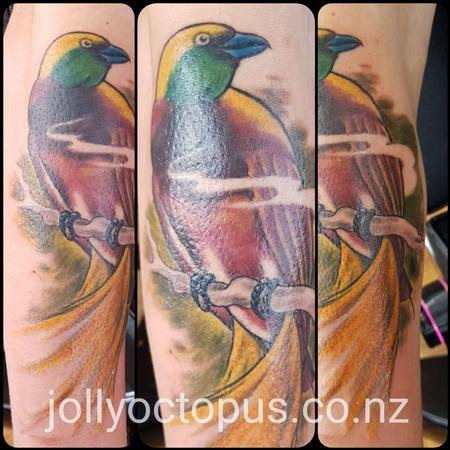 Steve Malley - Bird of Paradise Color Tattoo
