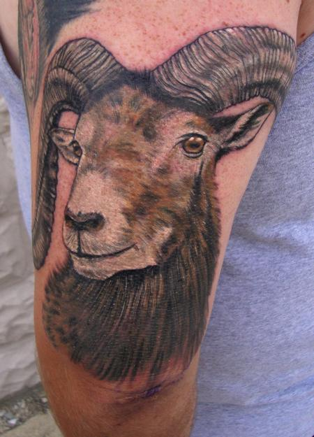 Tattoos - Corsican Ram - 98914