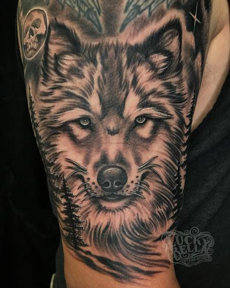 Tattoos - Black and Grey Wolf Tattoo by Howard Neal at Lucky Bella in North Little Rock, AR - 142243