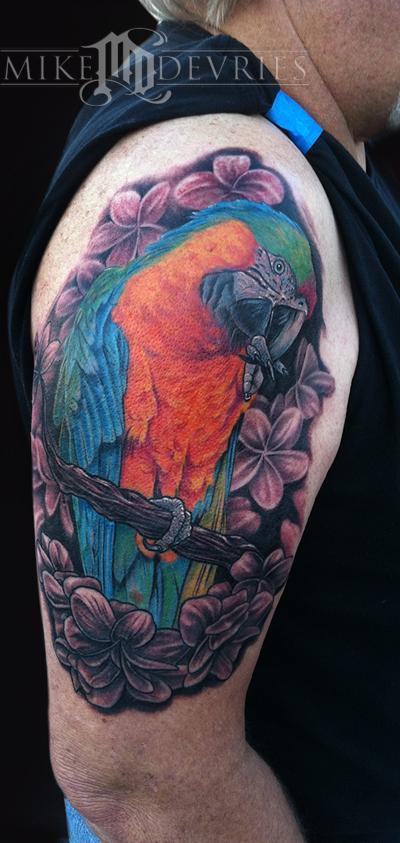 Tattoos - Catalina Macaw - 62090