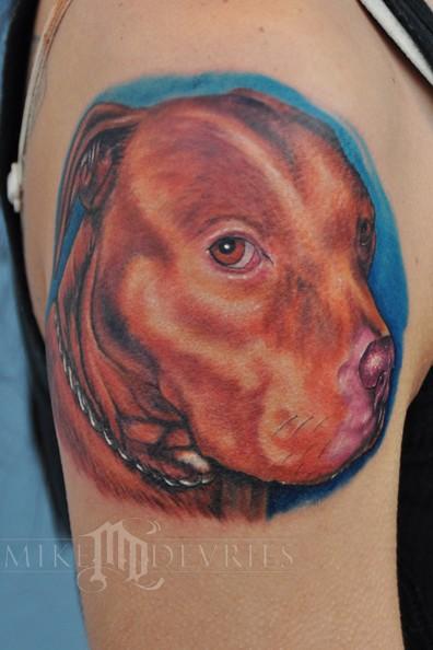 Tattoos - PitBull Tattoo - 53121