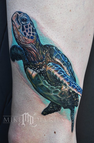 Mike DeVries - Sea Turtle