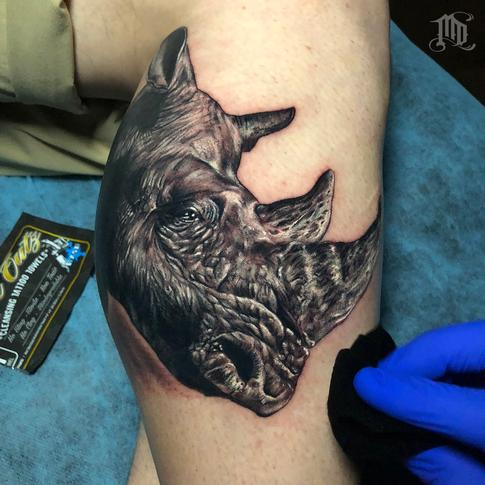 Tattoos - Rhino Tattoo - 134124
