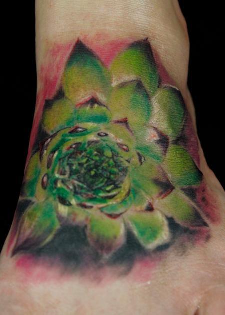 Steve Phipps - Succulent