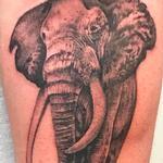 Tattoos - His Majesty - 142810