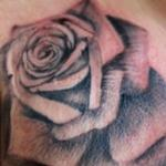 Tattoos - Rose 34 1/4 - 138104
