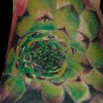 Tattoos - Succulent - 138358
