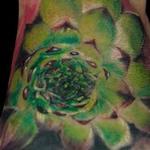 Tattoos - Succulent - 138358