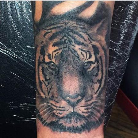 Joe Meiers  - Tigre