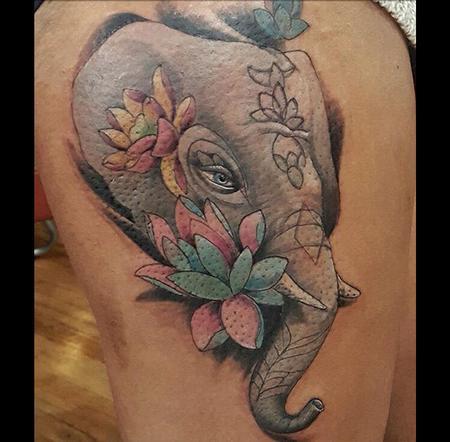 Manny Almonte - Elephant
