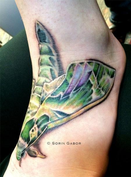 Tattoos - moth view2 - 93221