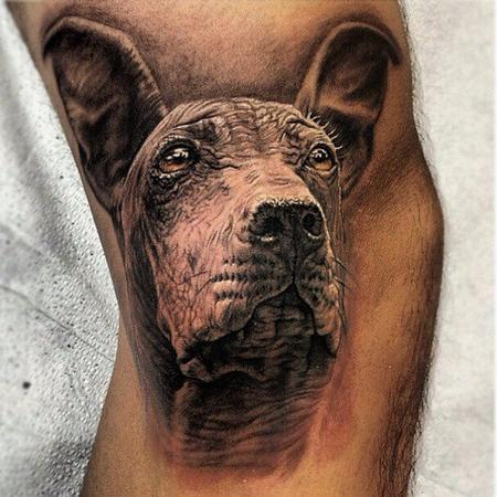 Tattoos - Peruvian Hairless dog - 70188