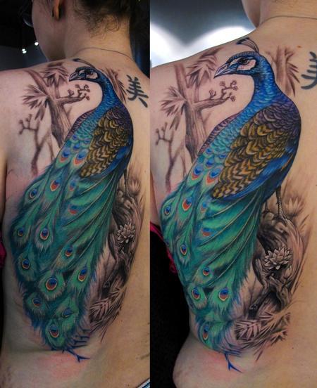 Tattoos - Peacock tattoo - 65116