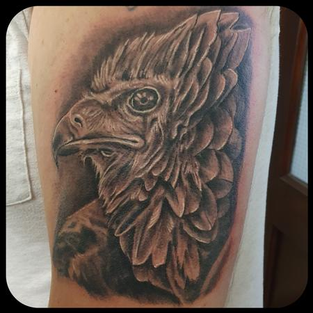 Tattoos - Bateleur Eagle - 142769
