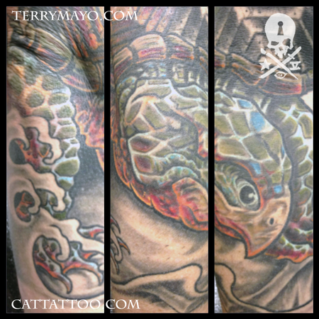 Terry Mayo - Turtle Coverup