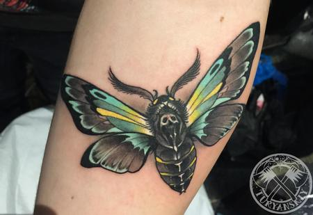 Tattoos - Moth Tattoo - 115864